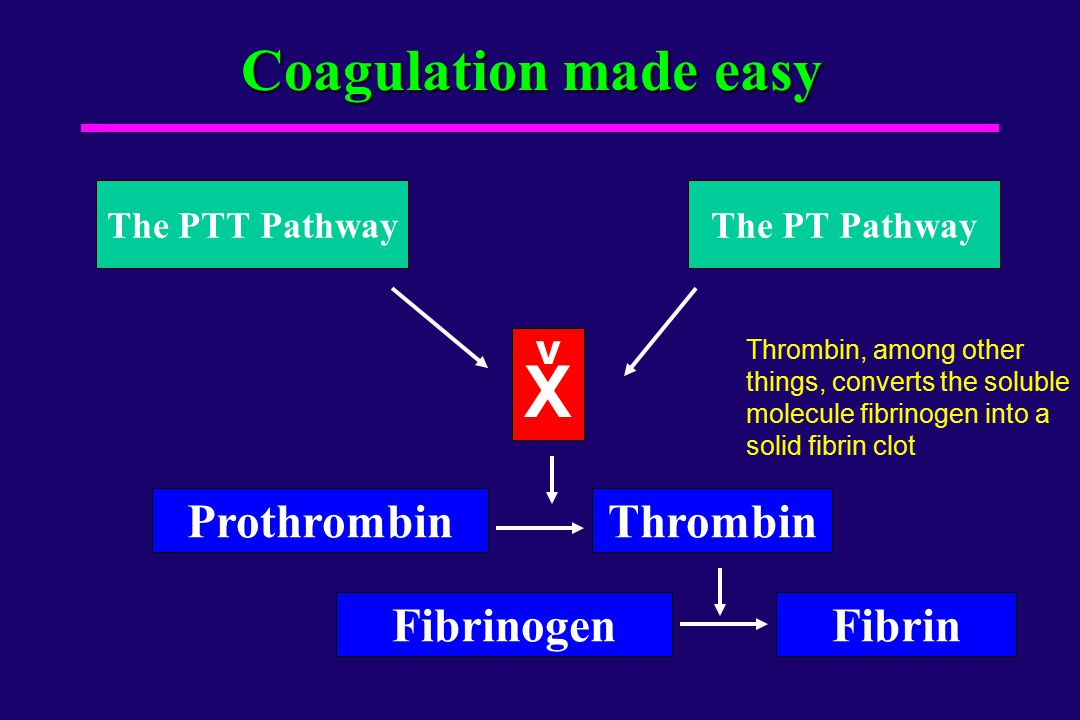 X Coagulation made easy Prothrombin Thrombin Fibrinogen Fibrin