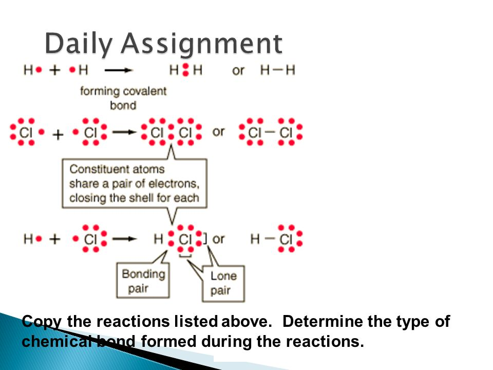 Daily Assignment Copy the reactions listed above.