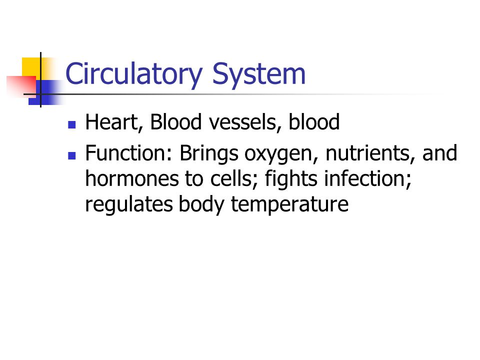 Circulatory System Heart, Blood vessels, blood