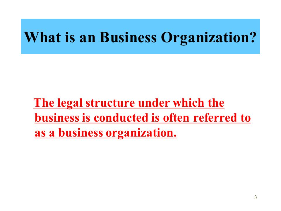What is an Business Organization