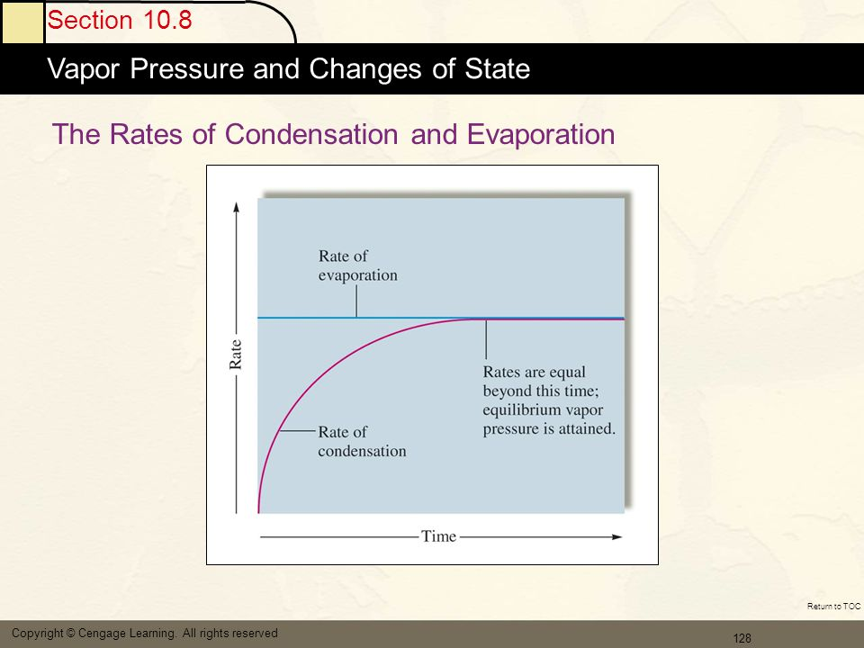 The Rates of Condensation and Evaporation