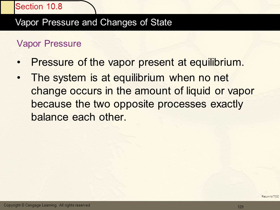 Pressure of the vapor present at equilibrium.