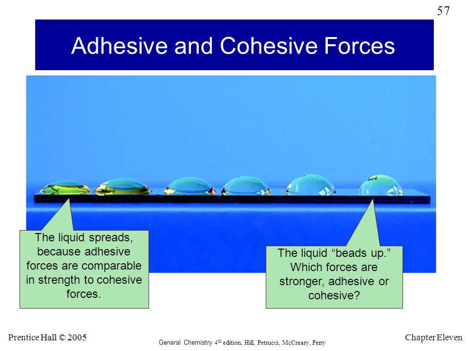 Adhesive and Cohesive Forces