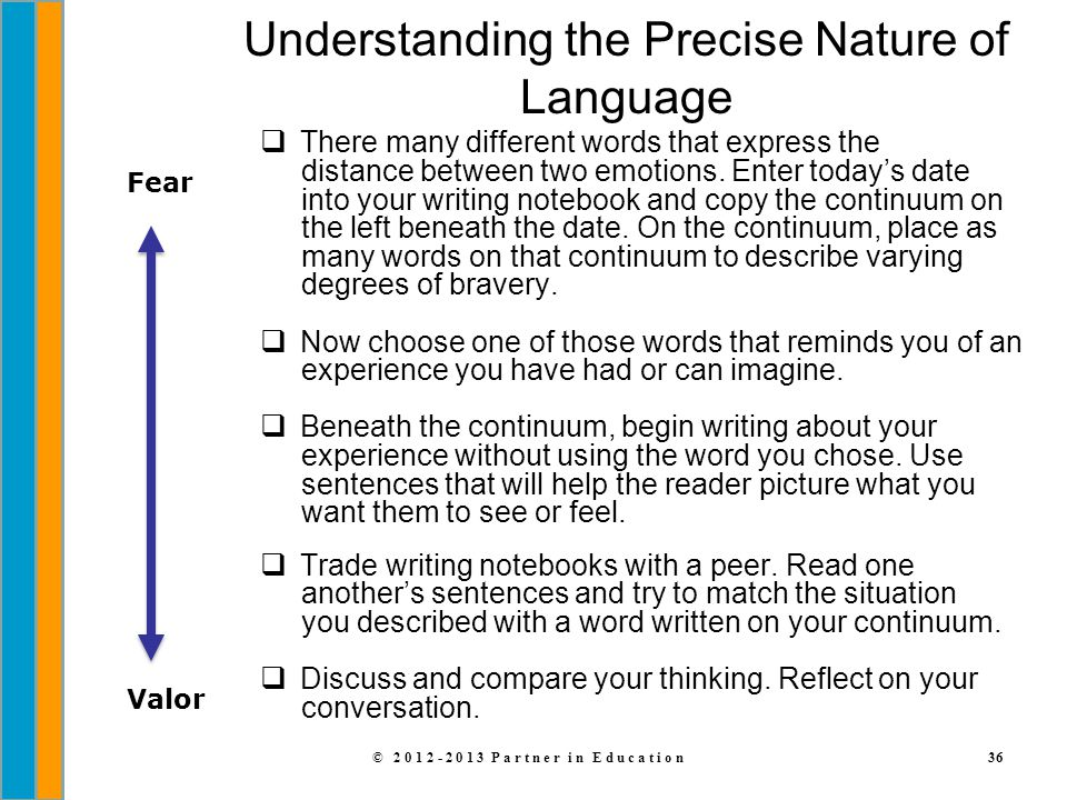 Understanding the Precise Nature of Language