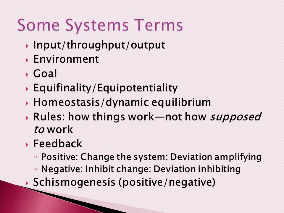 Some Systems Terms Input/throughput/output Environment Goal