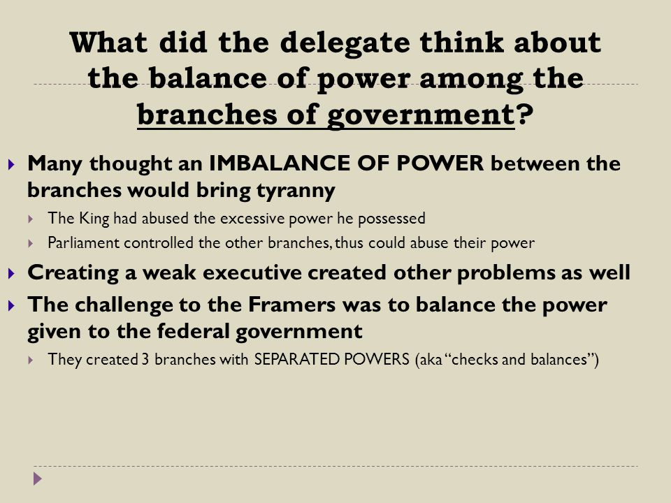What did the delegate think about the balance of power among the branches of government