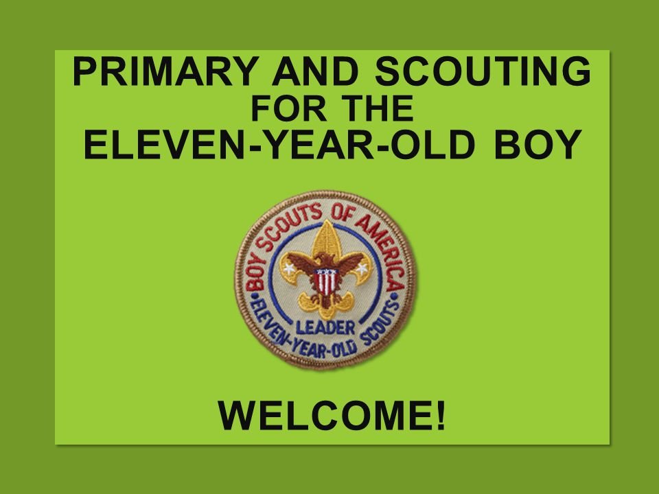 Primary and Scouting for the Eleven-year-old boy Welcome!
