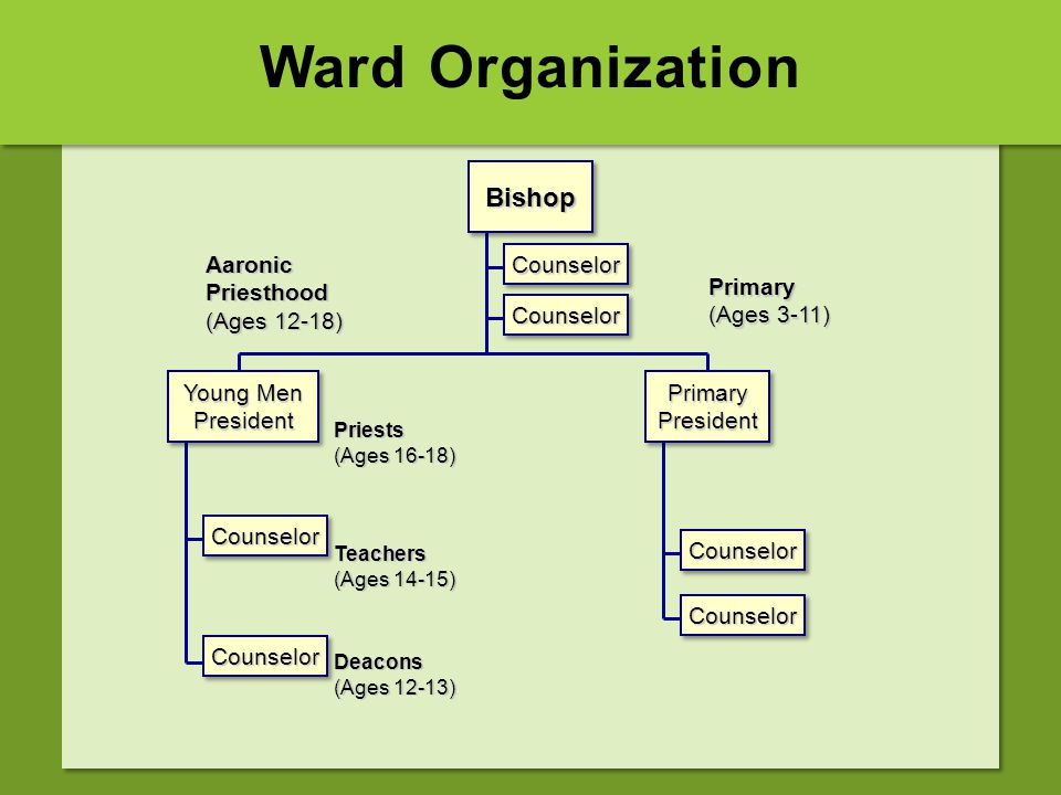 Ward Organization Bishop Aaronic Priesthood (Ages 12-18) Counselor