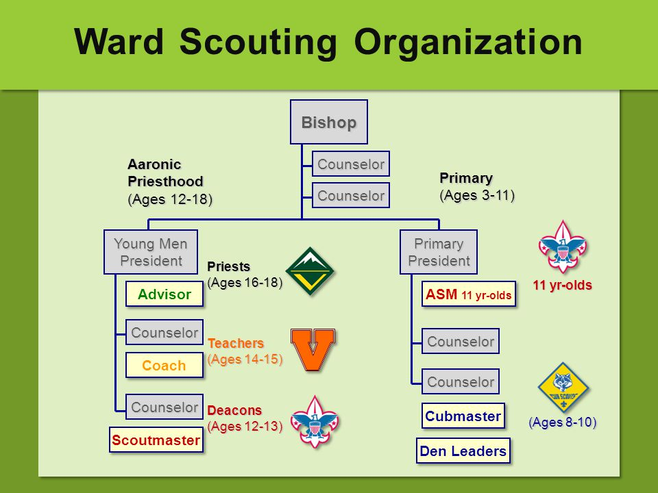 Ward Scouting Organization