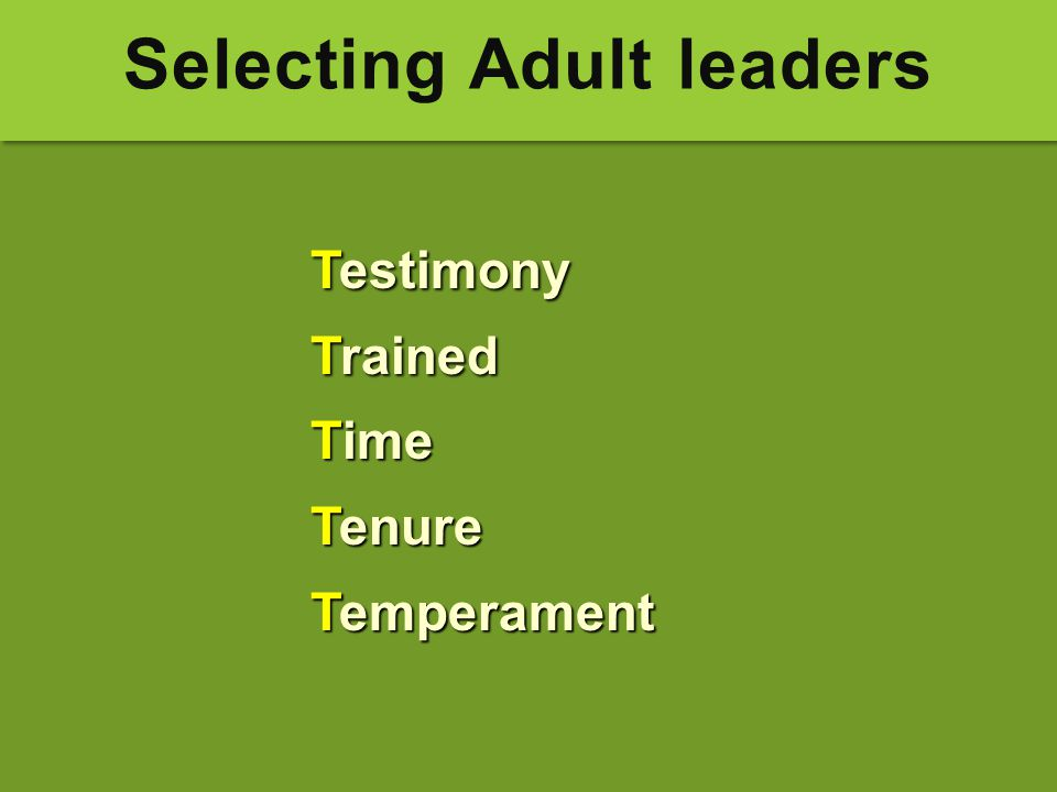 Selecting Adult leaders