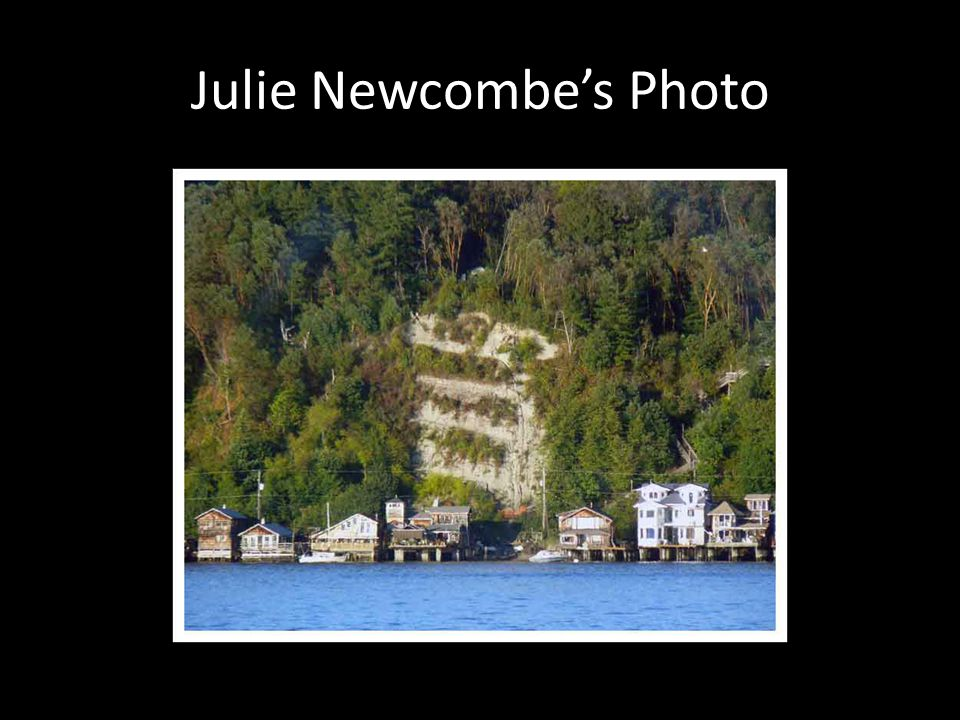 Julie Newcombe's Photo