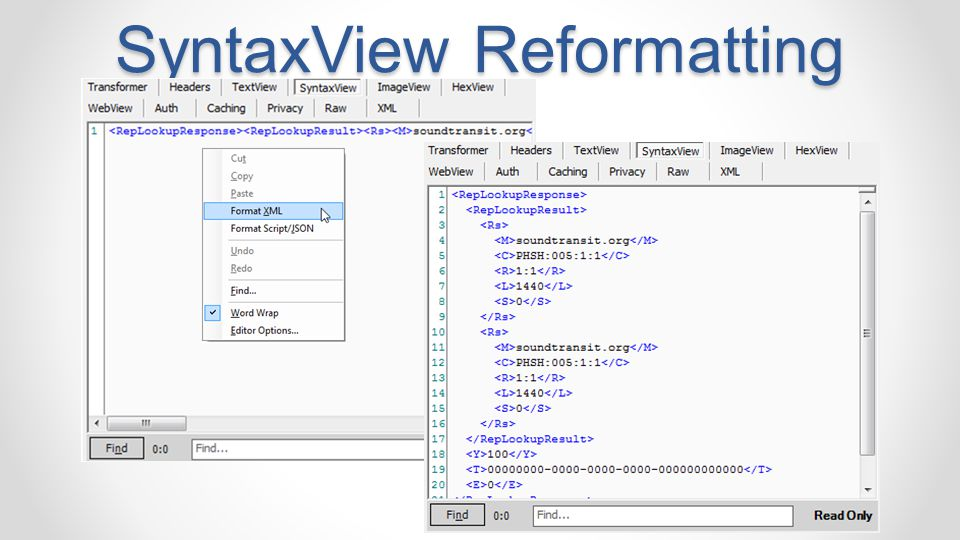 SyntaxView Reformatting