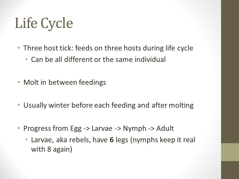 Life Cycle Three host tick: feeds on three hosts during life cycle