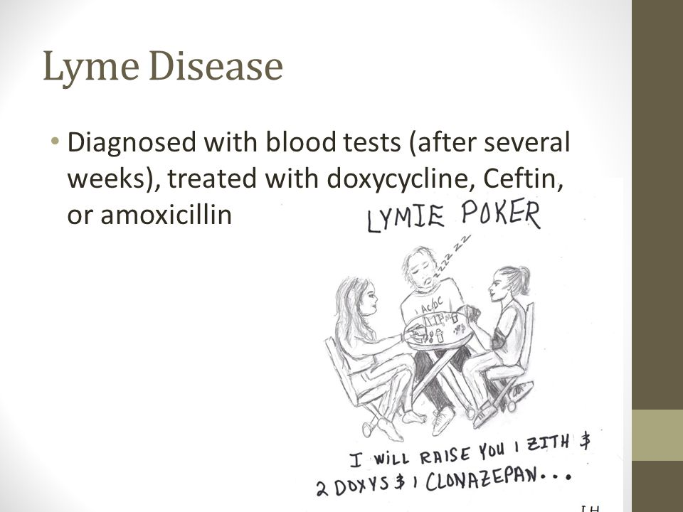Lyme Disease Diagnosed with blood tests (after several weeks), treated with doxycycline, Ceftin, or amoxicillin.