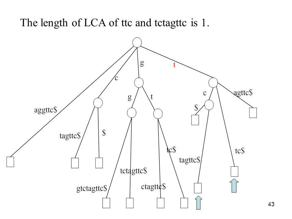 The length of LCA of ttc and tctagttc is 1.