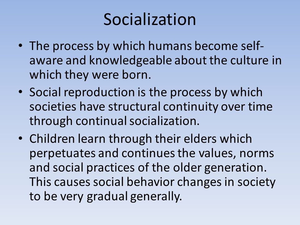 Socialization The process by which humans become self-aware and knowledgeable about the culture in which they were born.