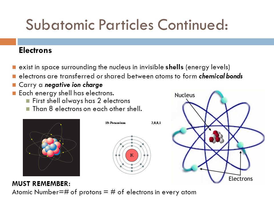 Subatomic Particles Continued: