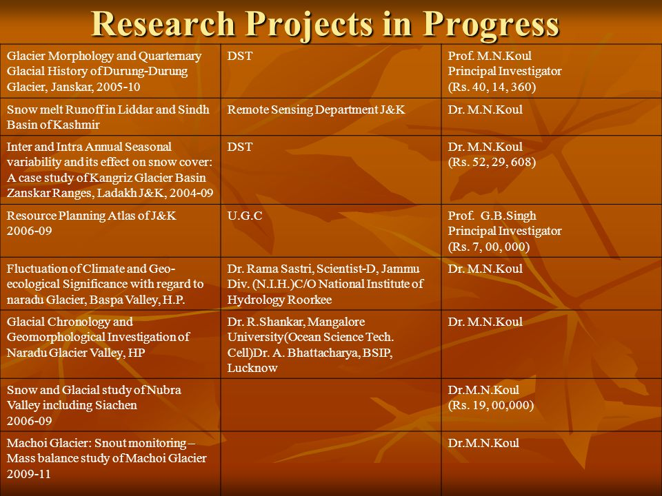 Research Projects in Progress