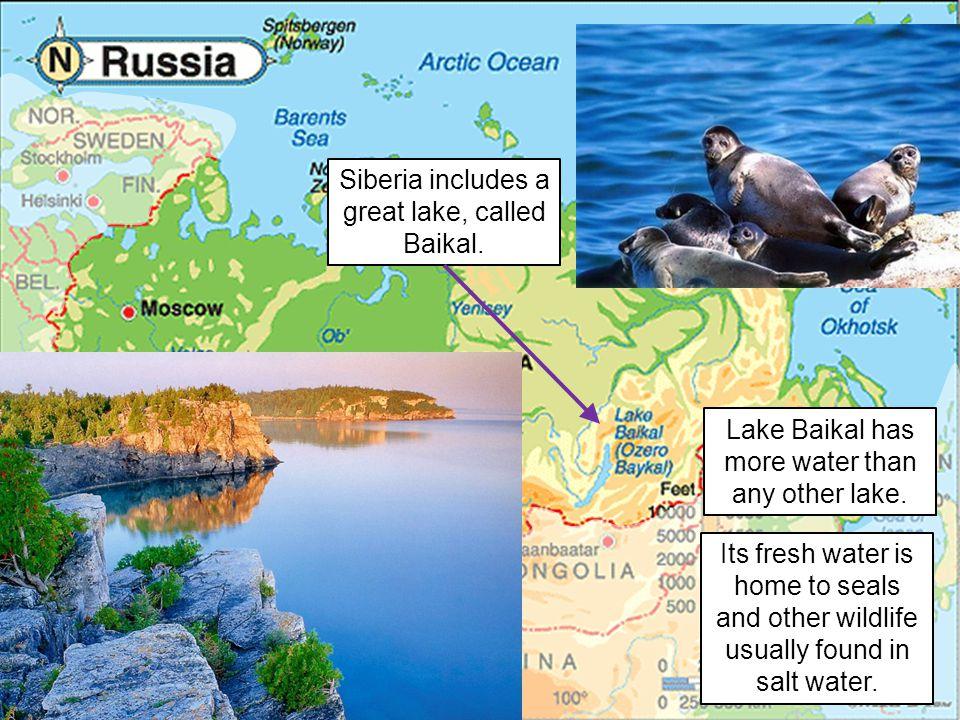 Siberia includes a great lake, called Baikal.