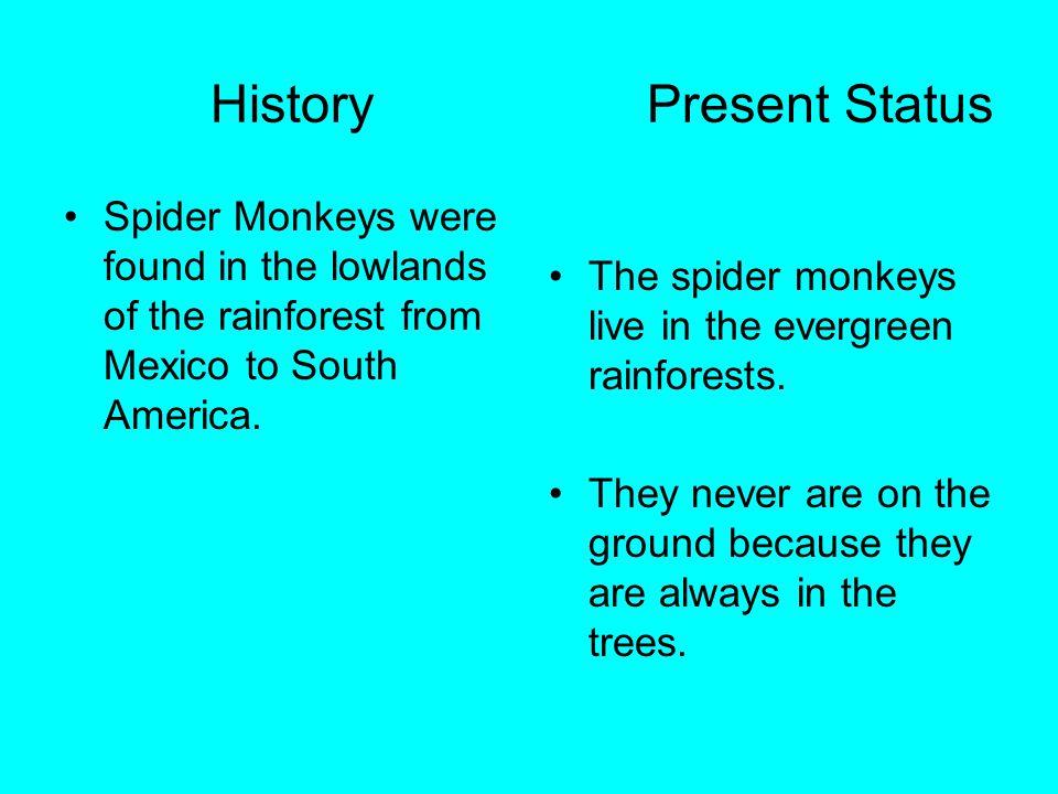 History Present Status