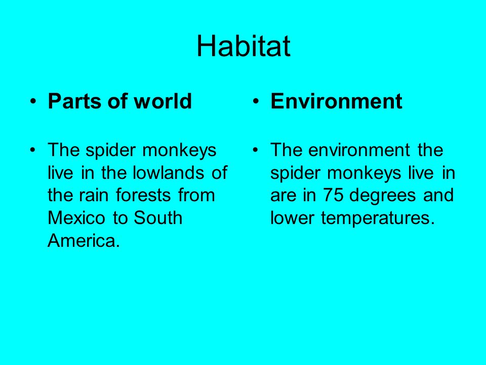 Habitat Parts of world Environment