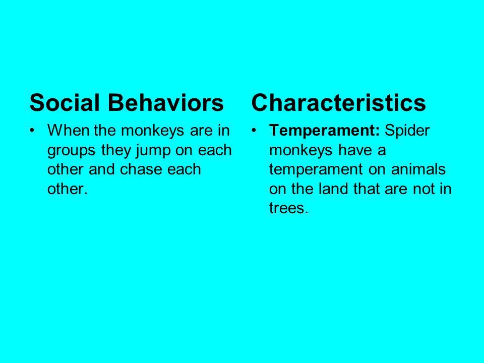 Social Behaviors Characteristics