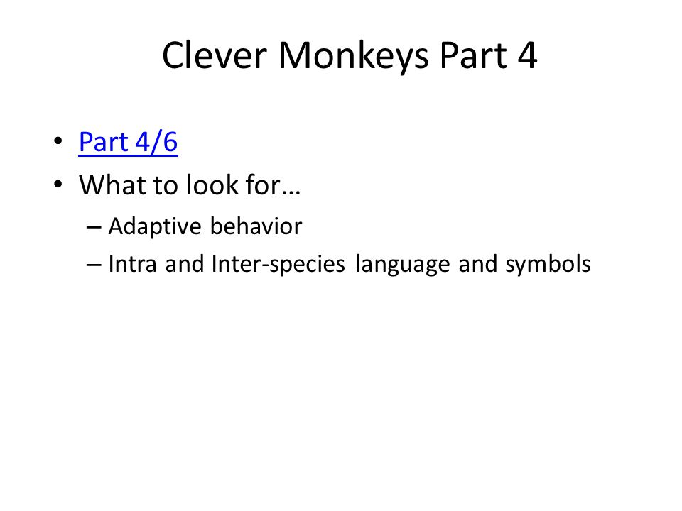 Clever Monkeys Part 4 Part 4/6 What to look for… Adaptive behavior