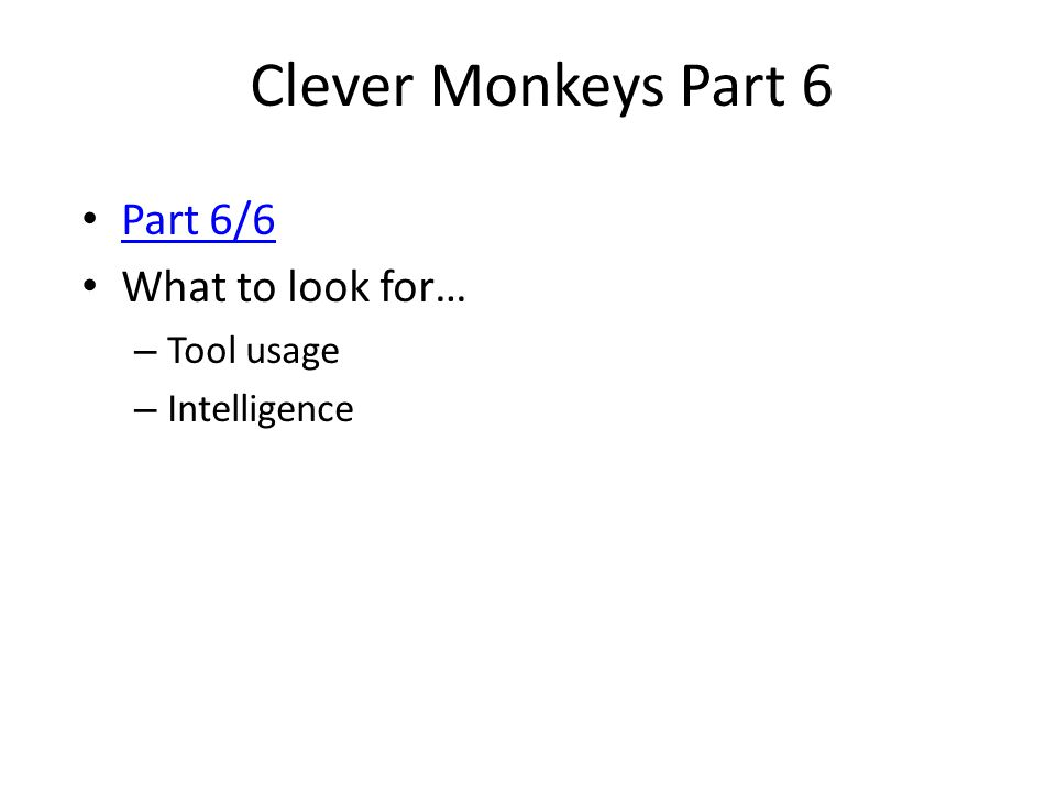 Clever Monkeys Part 6 Part 6/6 What to look for… Tool usage