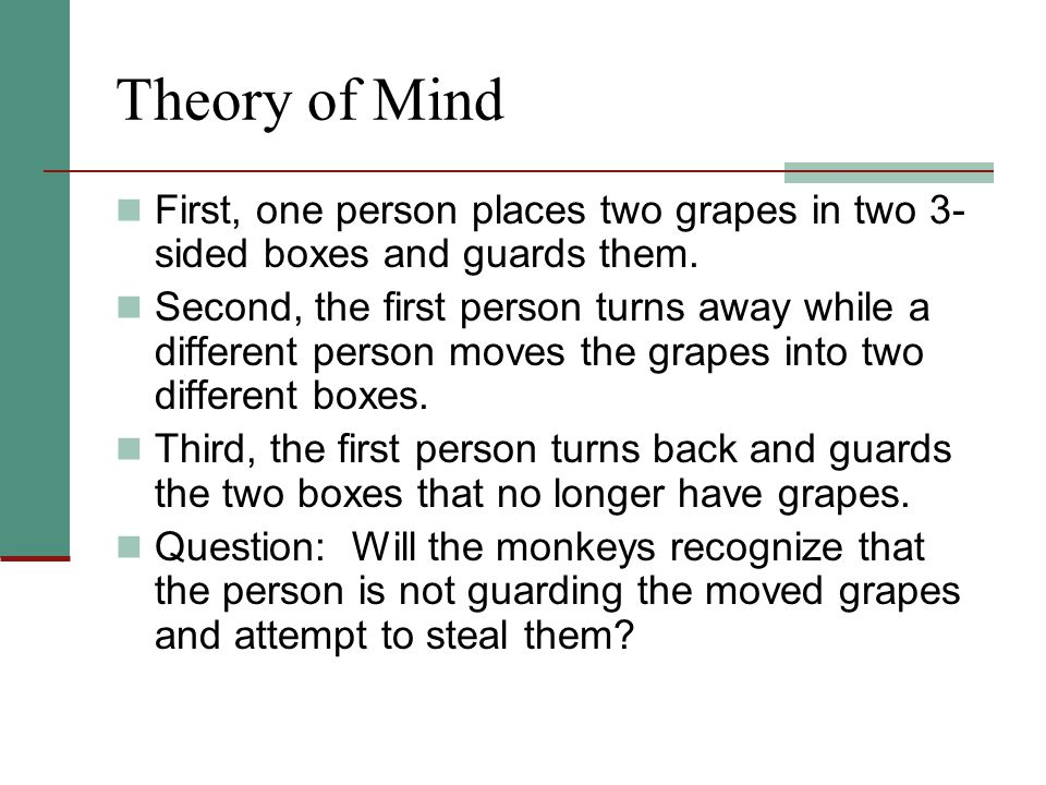 Theory of Mind First, one person places two grapes in two 3-sided boxes and guards them.