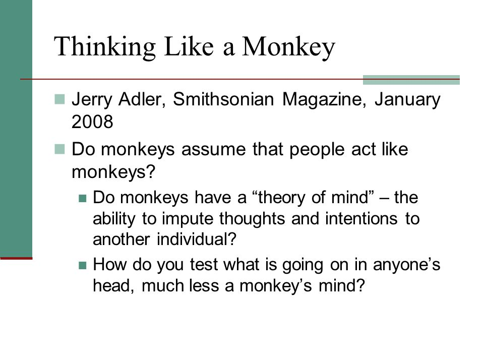 Thinking Like a Monkey Jerry Adler, Smithsonian Magazine, January 2008
