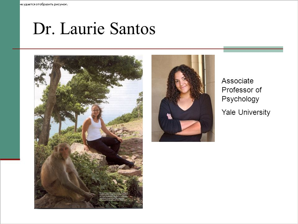 Dr. Laurie Santos Associate Professor of Psychology Yale University