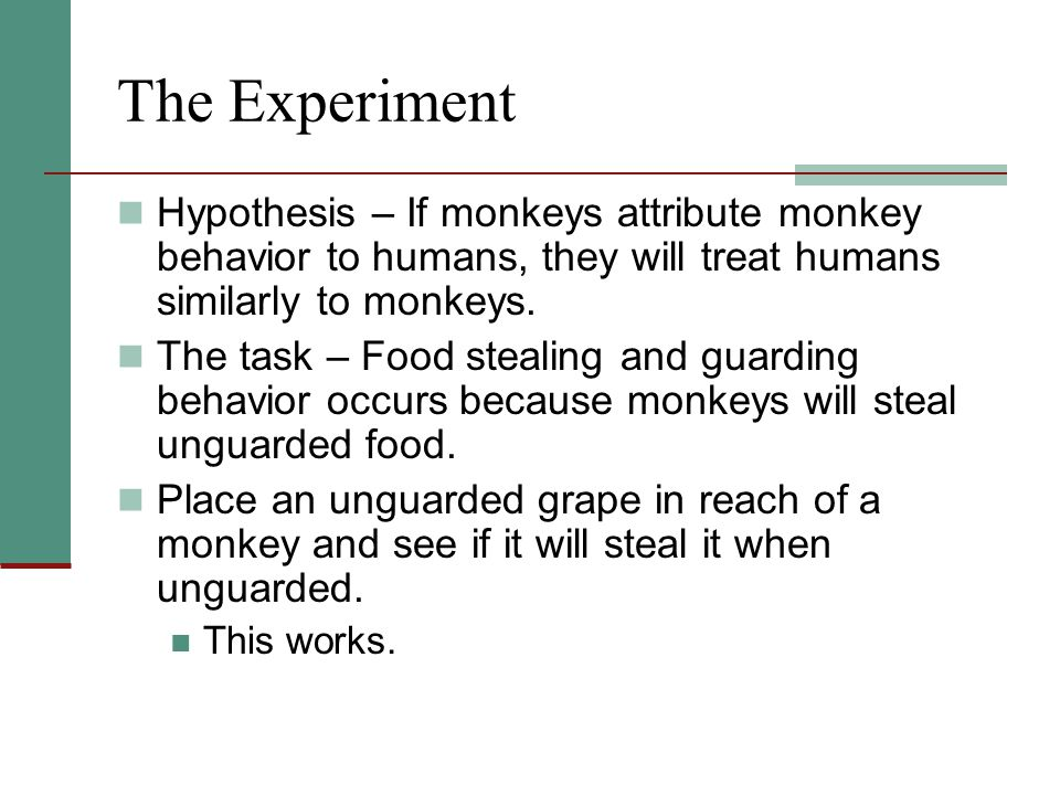 The Experiment Hypothesis – If monkeys attribute monkey behavior to humans, they will treat humans similarly to monkeys.