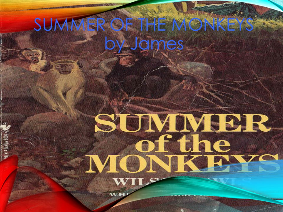 SUMMER OF THE MONKEYS by James