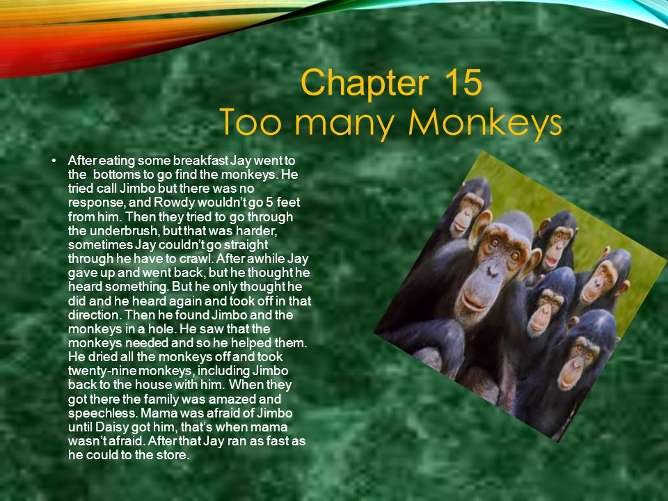 Chapter 15 Too many Monkeys