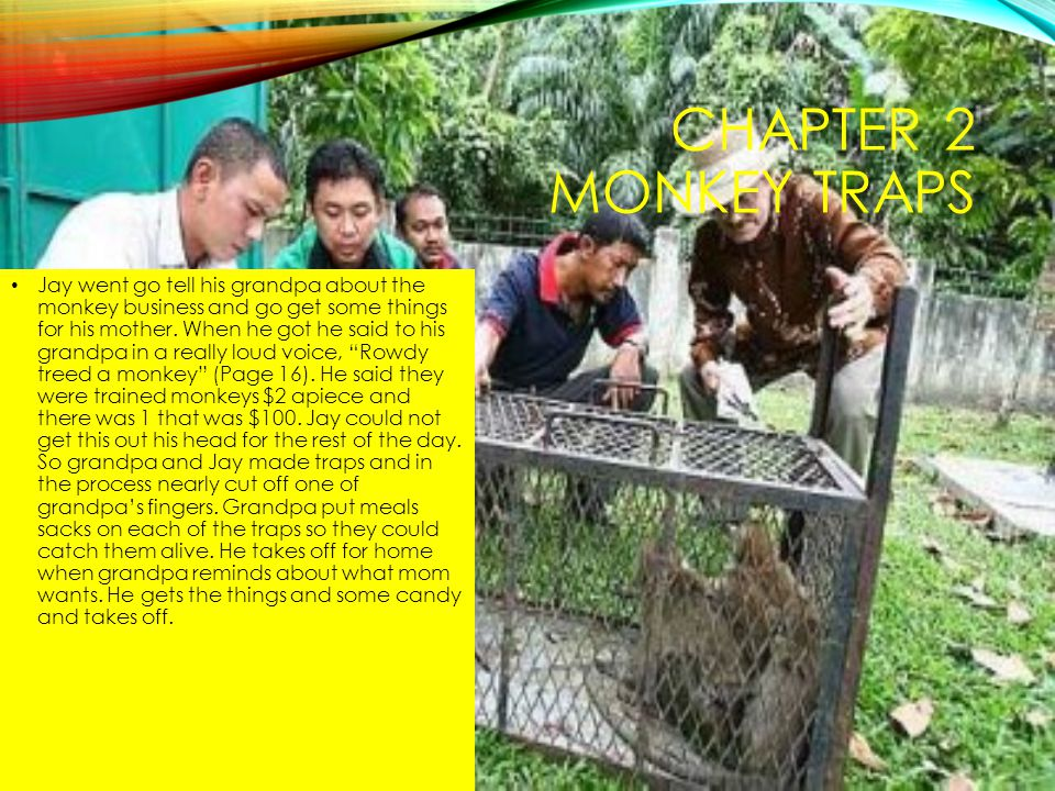 Chapter 2 Monkey Traps