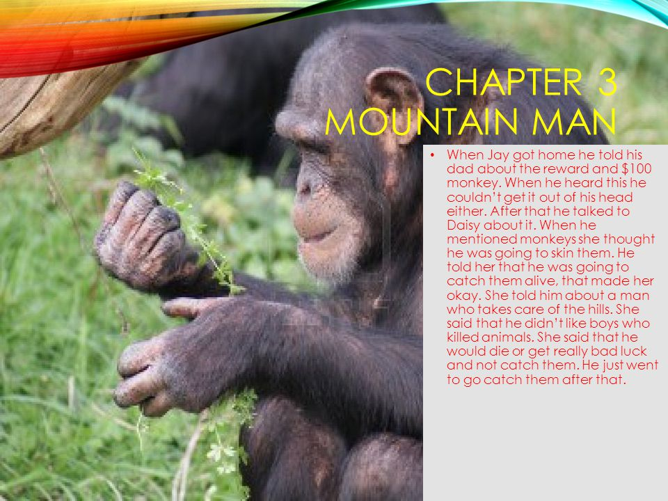 Chapter 3 Mountain Man