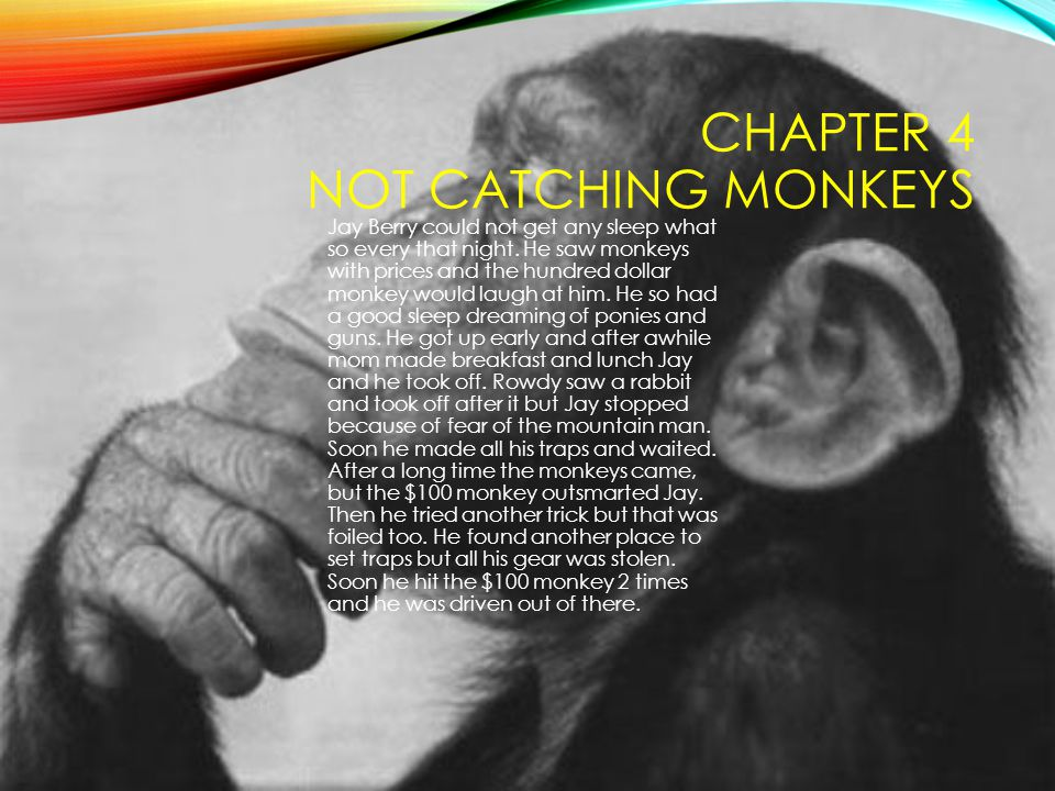 Chapter 4 Not Catching Monkeys