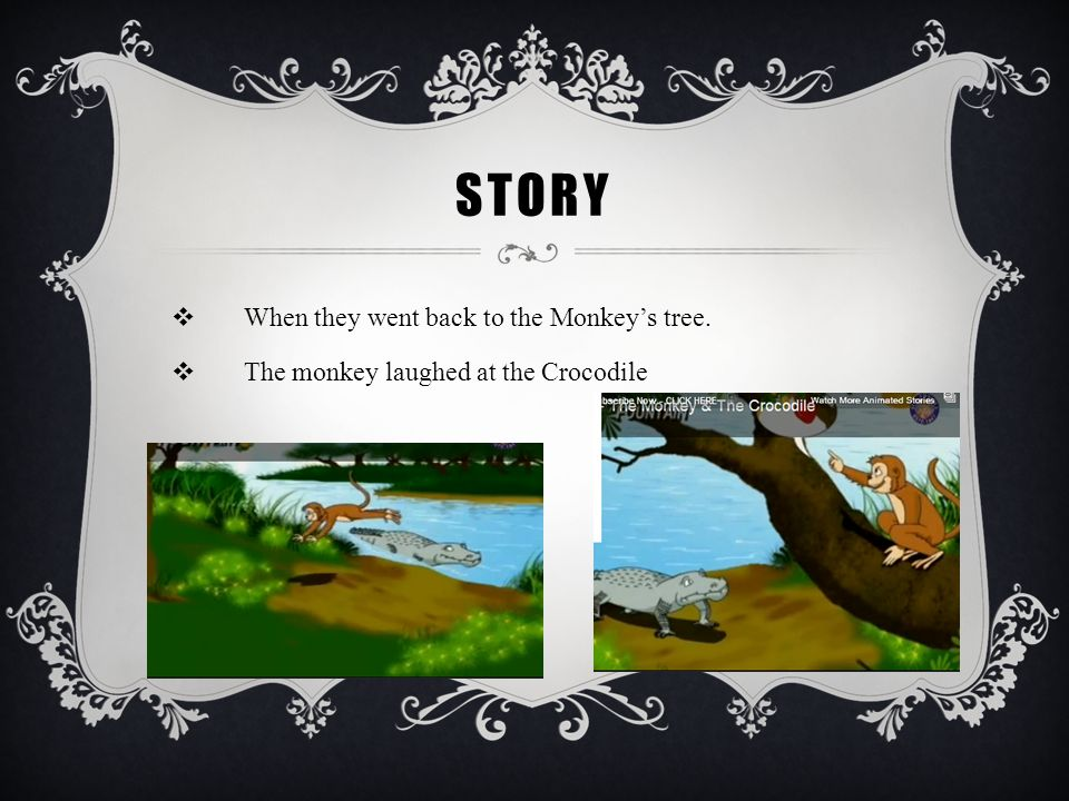 Story When they went back to the Monkey's tree.