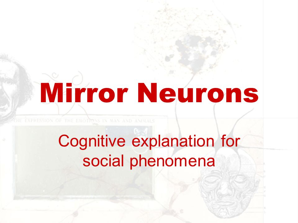 Cognitive explanation for social phenomena