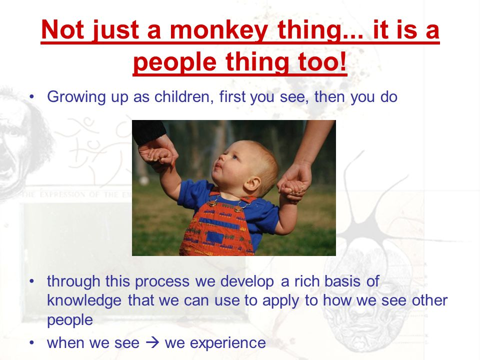 Not just a monkey thing... it is a people thing too!