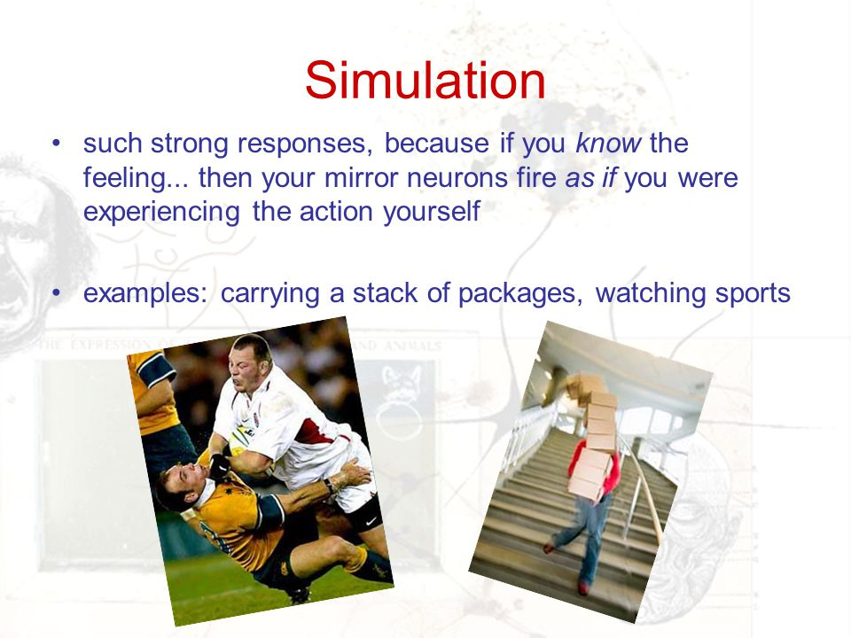 Simulation such strong responses, because if you know the feeling... then your mirror neurons fire as if you were experiencing the action yourself.