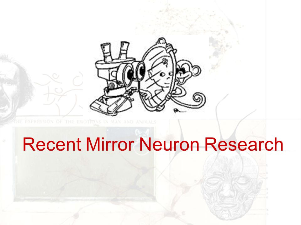 Recent Mirror Neuron Research