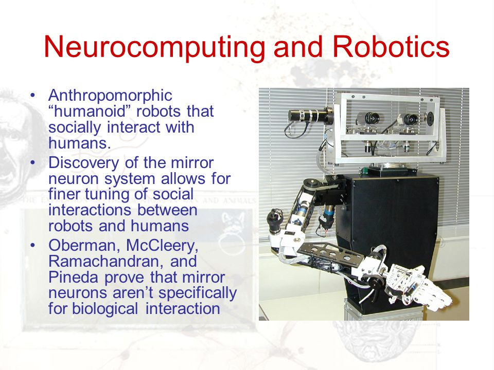 Neurocomputing and Robotics