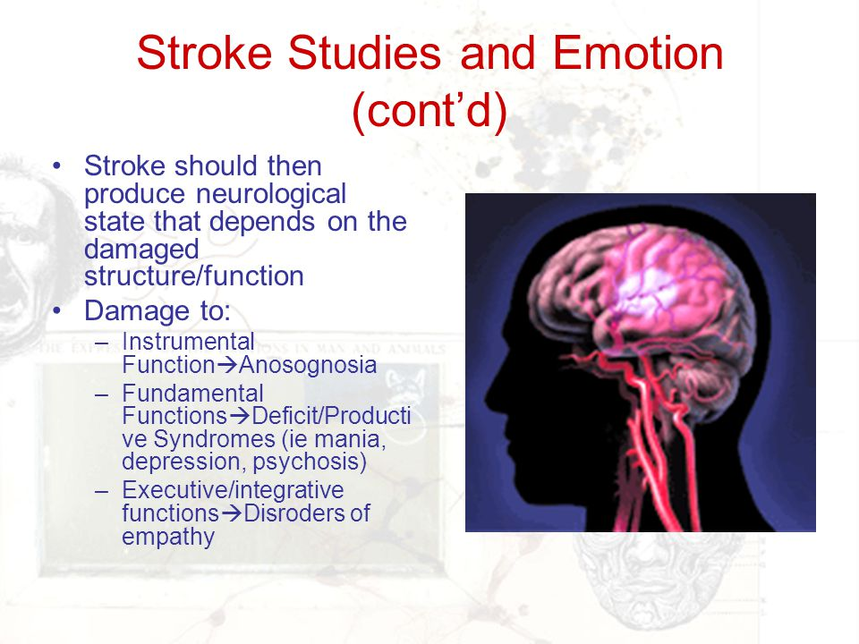 Stroke Studies and Emotion (cont'd)