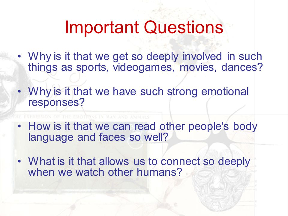 Important Questions Why is it that we get so deeply involved in such things as sports, videogames, movies, dances