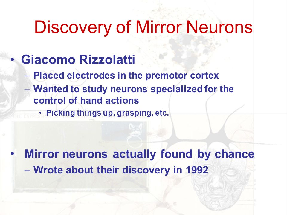 Discovery of Mirror Neurons