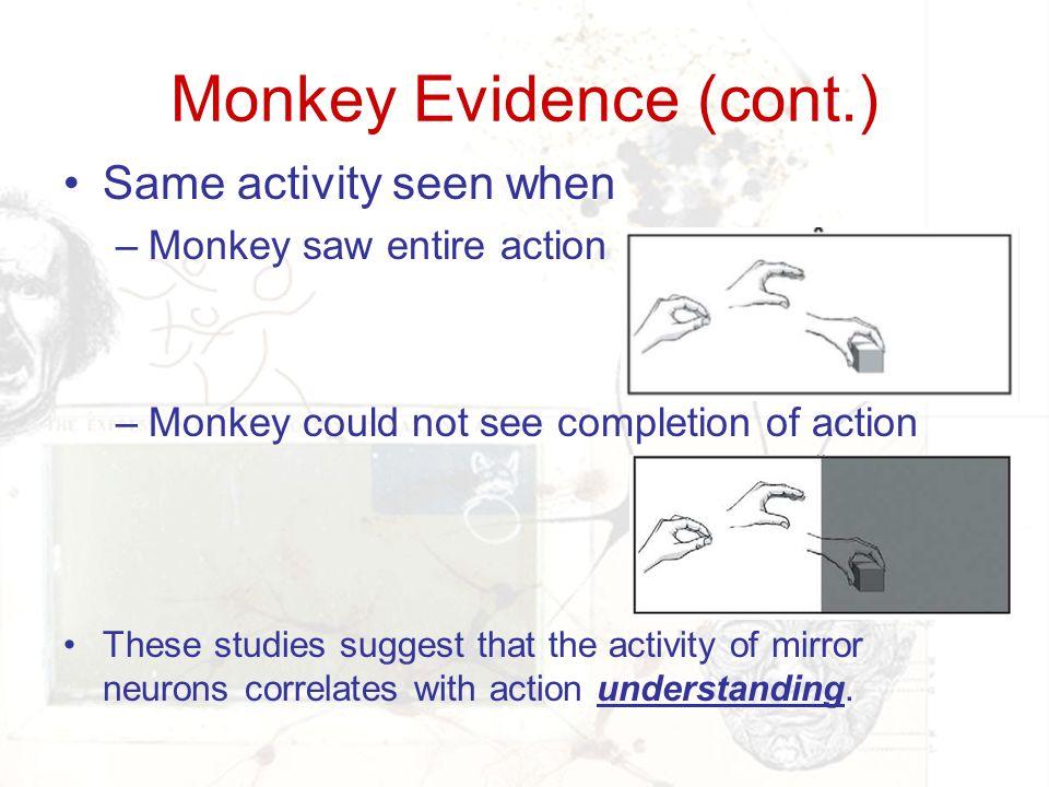 Monkey Evidence (cont.)