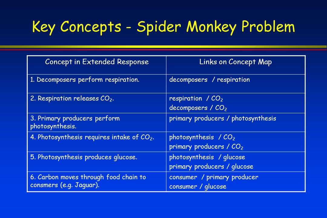 Key Concepts - Spider Monkey Problem