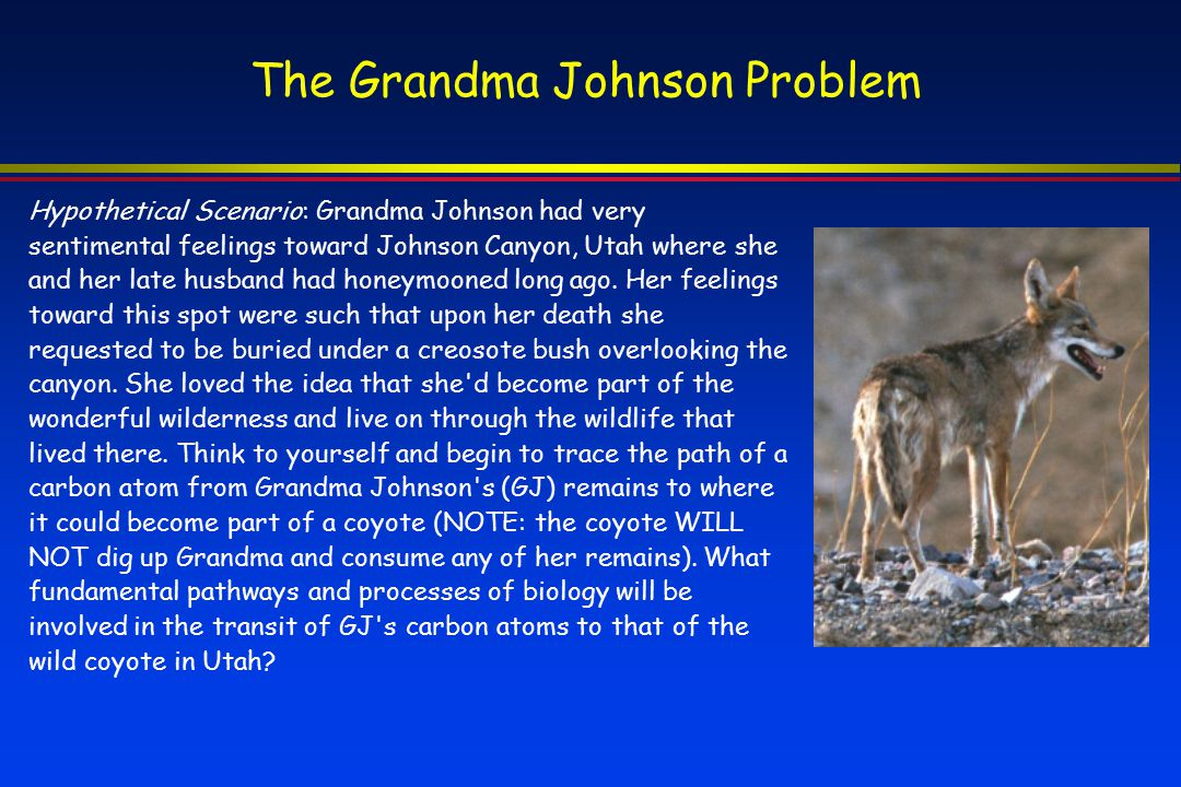 The Grandma Johnson Problem
