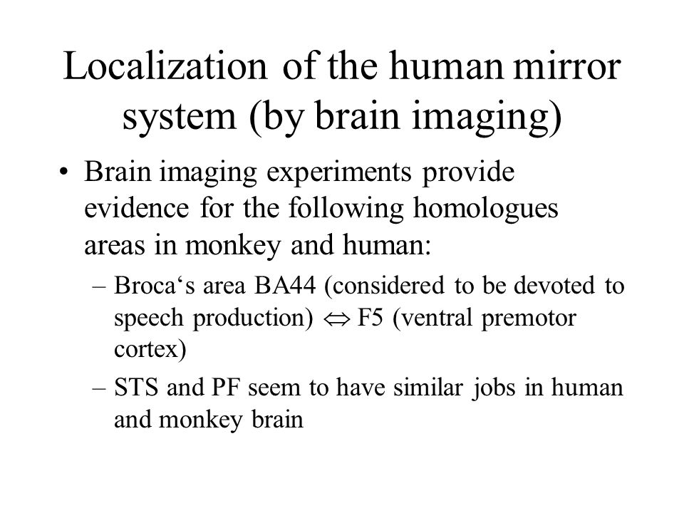 Localization of the human mirror system (by brain imaging)